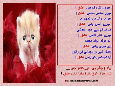 Faryad-Qatats (12)
